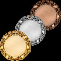 Медаль Вьюна 3503-070