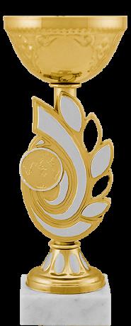 5419-120 Кубок Слэйд