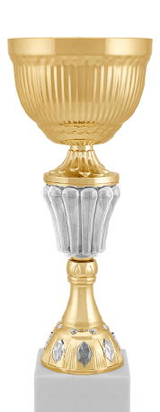 8707-101 Кубок Мэри