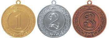 Медаль 400