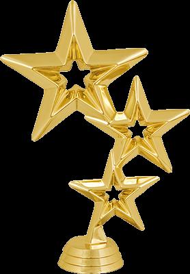 2520-100 Фигура Звезда