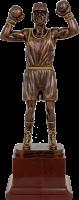 2316-260 Фигура Бокс