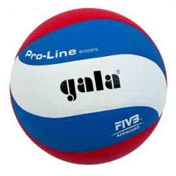 Мяч волейбольный Gala Pro-Line FIVB, арт. BV5591S