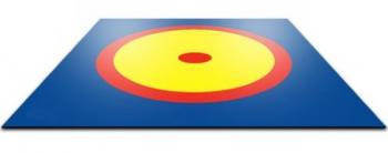 Покрывало борцовского ковра 10х10 трехцветное