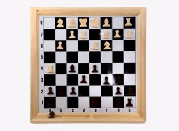 Шахматы настенные демонстрационные