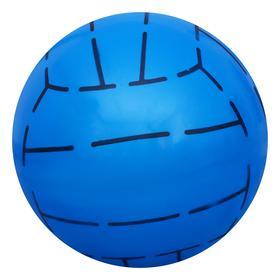 Мяч дет.баскетбол 22 см 65 гр, арт. 536170