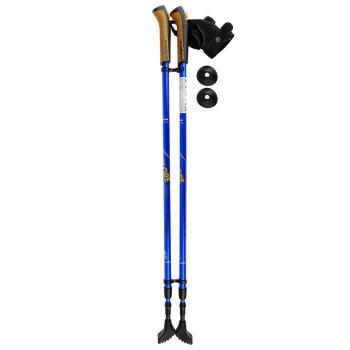 Палки складные для скандин ходьбы Ergo Nordic 110-140 см